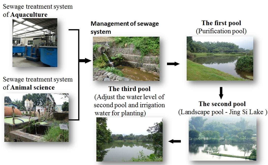 廢水處理循環利用