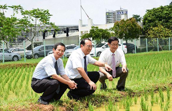 有機農王鐘和教授榮獲十大農業專家