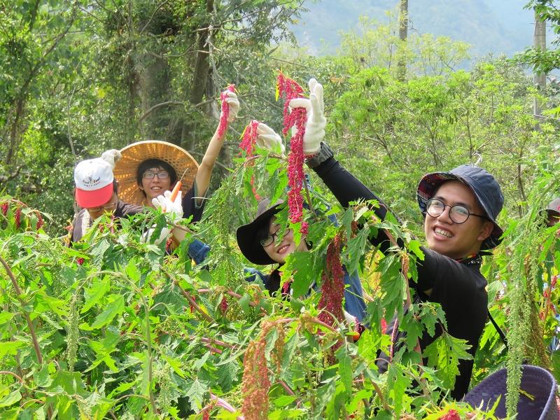 社區林業研究團隊