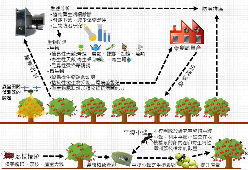 生物防治法來抑制蟲害