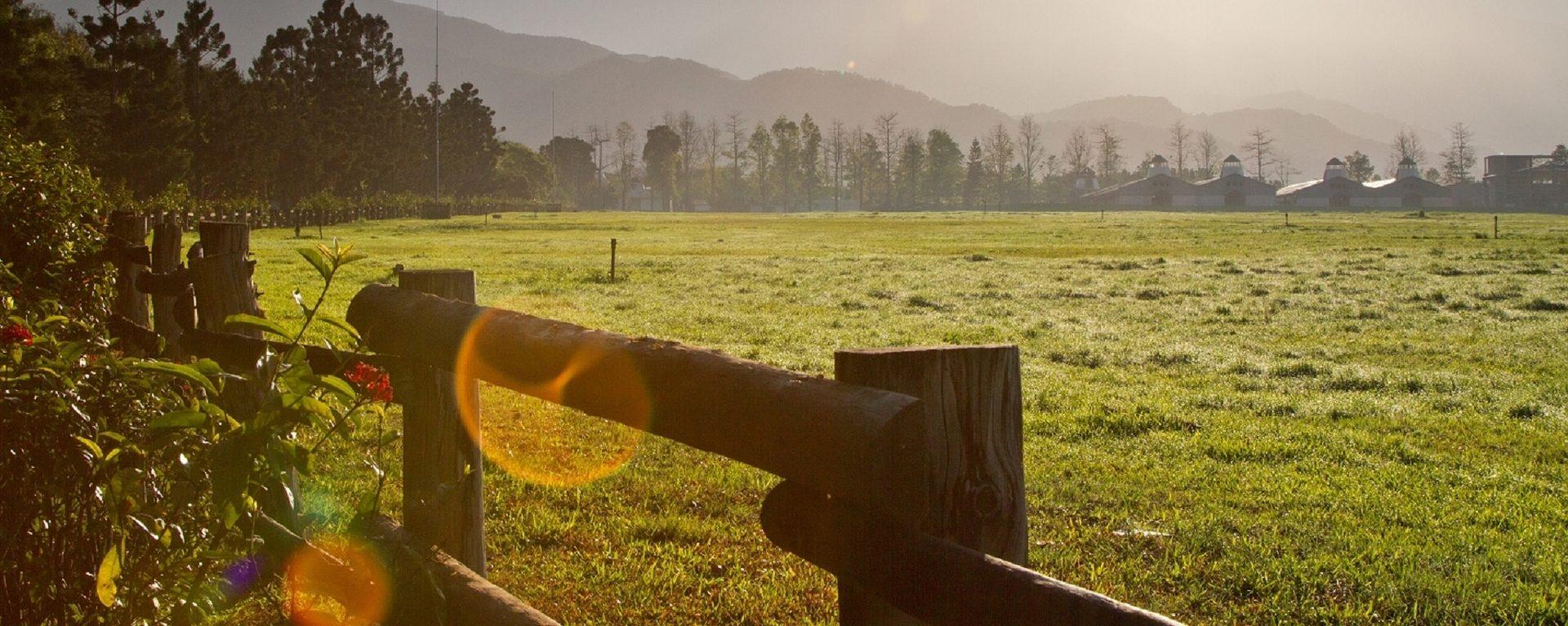 欄杆旁清晨陽光灑落大草原